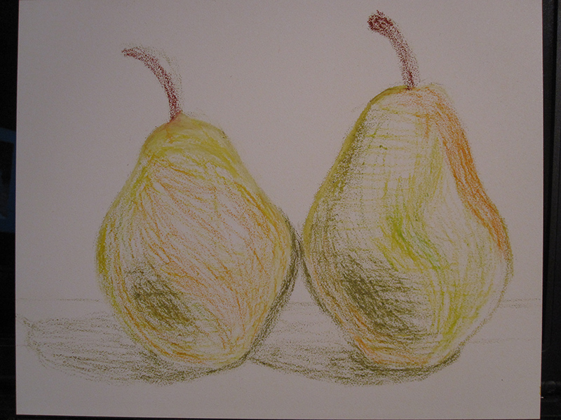 Pears in Oil Pastels - first sketch