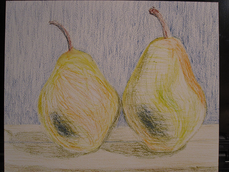 Pears in Oil Pastels - second sketch