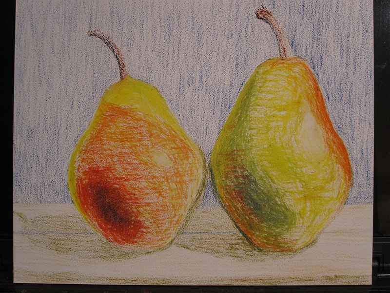 Pears in Oil Pastels - sketch 3